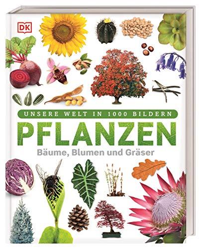 Pflanzen: Bäume, Blumen und Gräser (Unsere Welt in...
