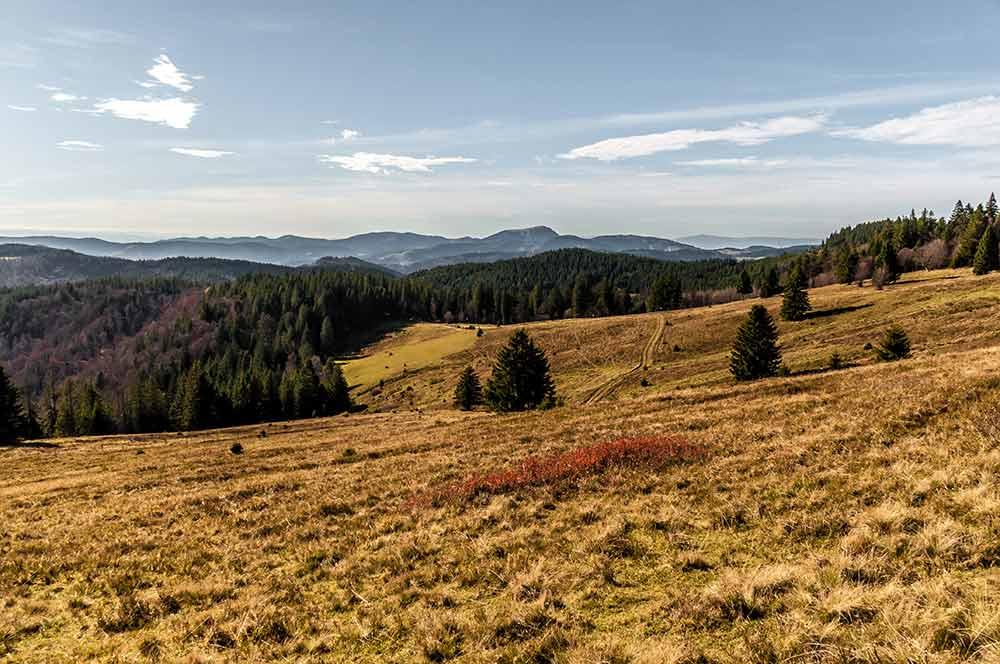 Auf dem Bild sind Berge im südlichen Schwarzwald zu sehen.