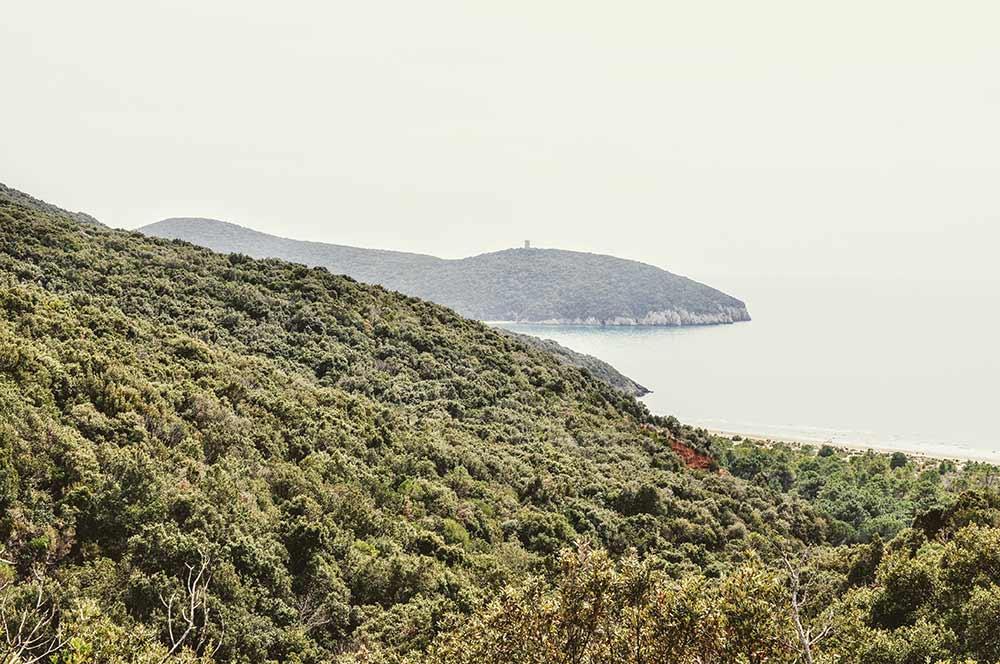 Die Küste der Maremma