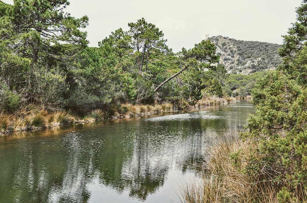 Kleine Lagune in der Maremma