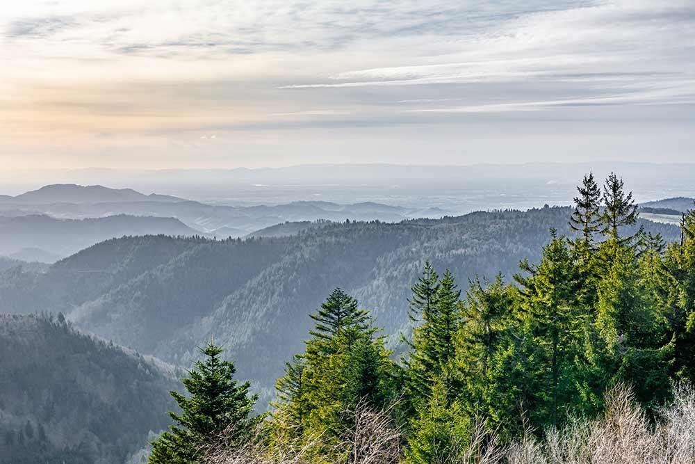 schliffkopf-schwarzwaldhochstrasse