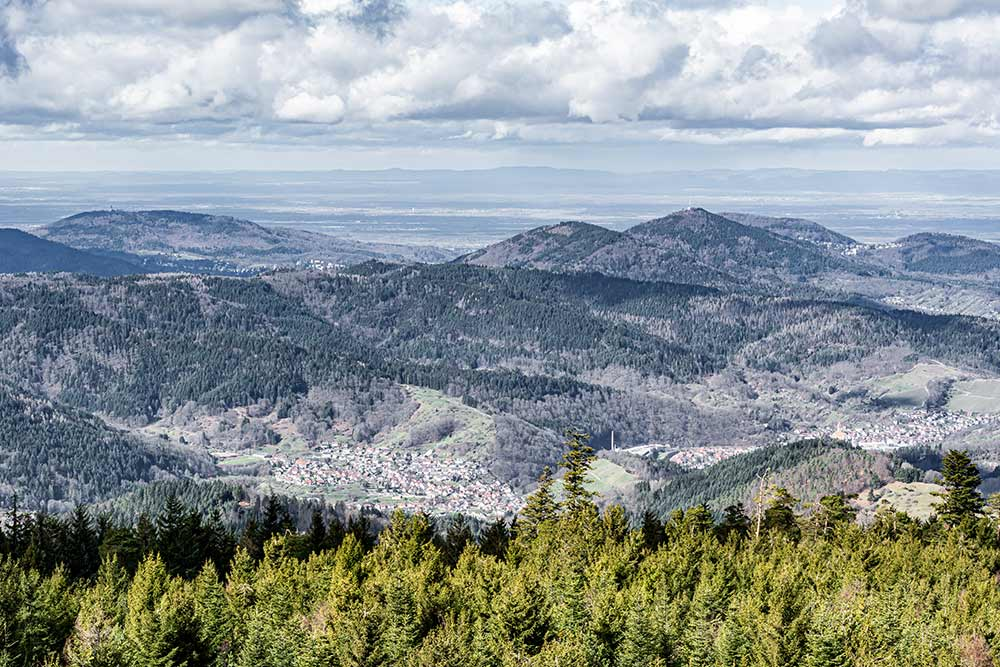 Aussicht vom Hohlohturm im Nordschwarzwald
