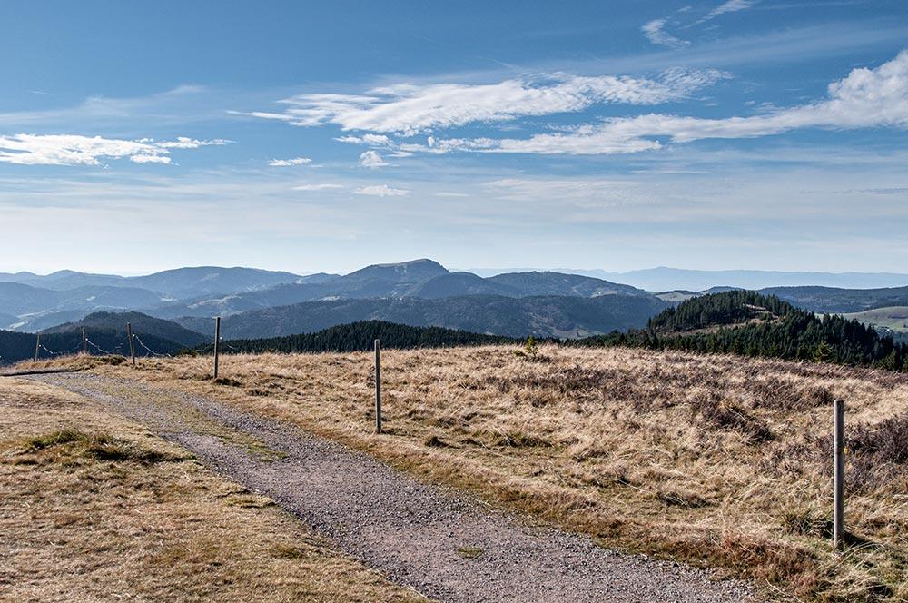 Das Bild zeigt einen Weg auf dem Gipfel des Herzogenhorns mit Aussicht über die markanten Berge des südlichen Schwarzwalds.