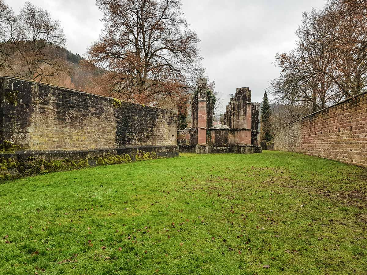 Im Bild zu sehen ist das hintere Ende der Peter- und Pauluskirche in der Klosterruine von Hirsau.
