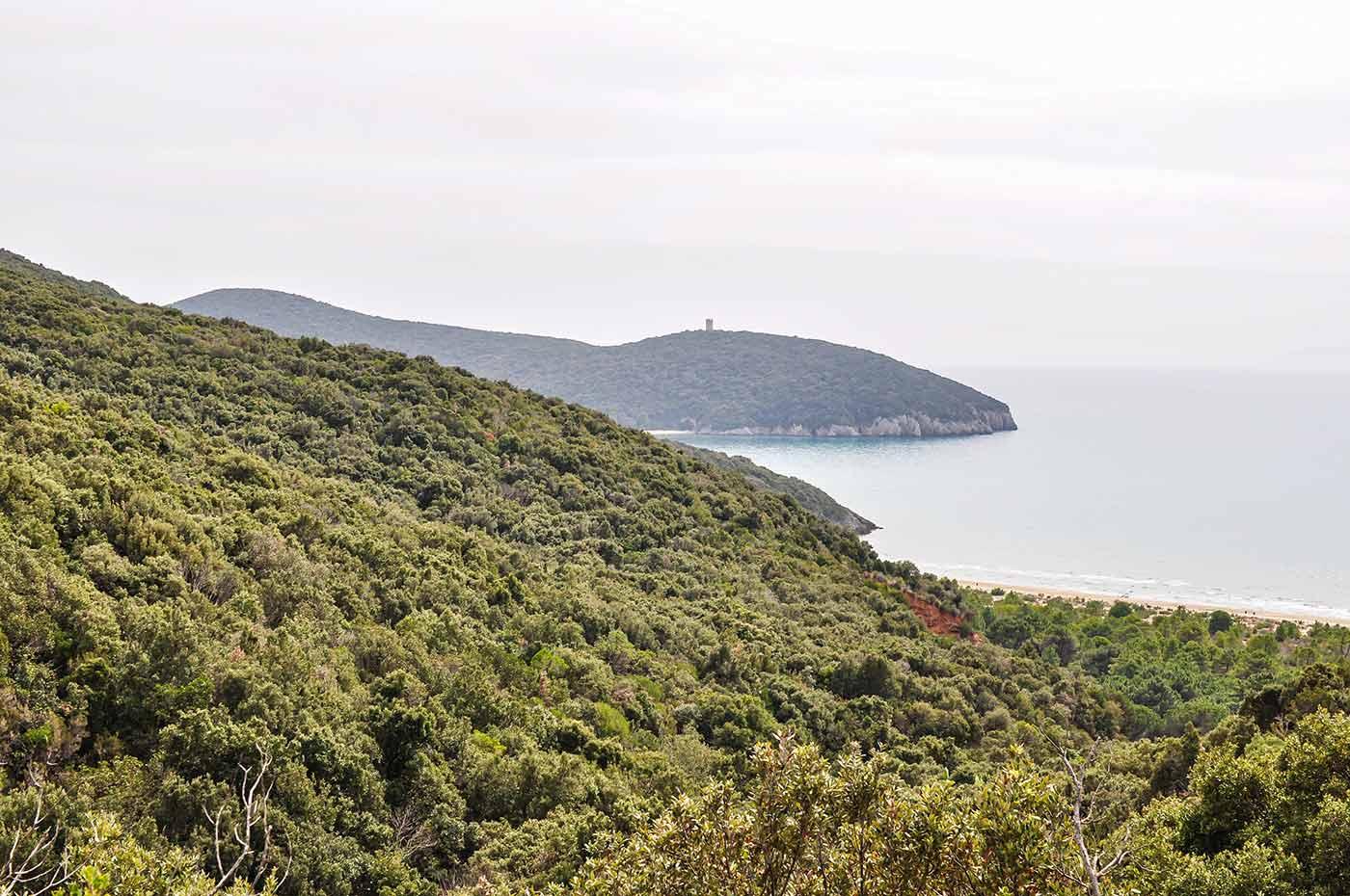 Wilde und ursprüngliche Landschaft in Italien - die Maremma in der Region Toskana