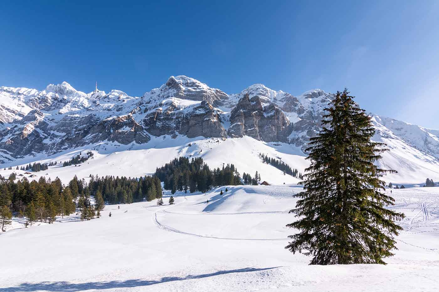 Der Berg Säntis vom Kanton St. Gallen aus gesehen