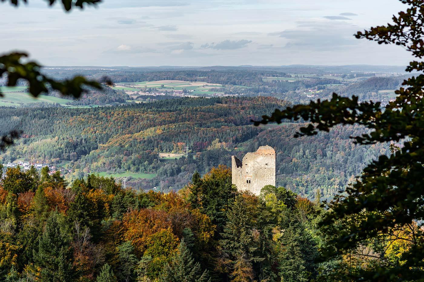 Von der Ruine Altbodmann aus hat man eine gute Aussicht über den Bodensee