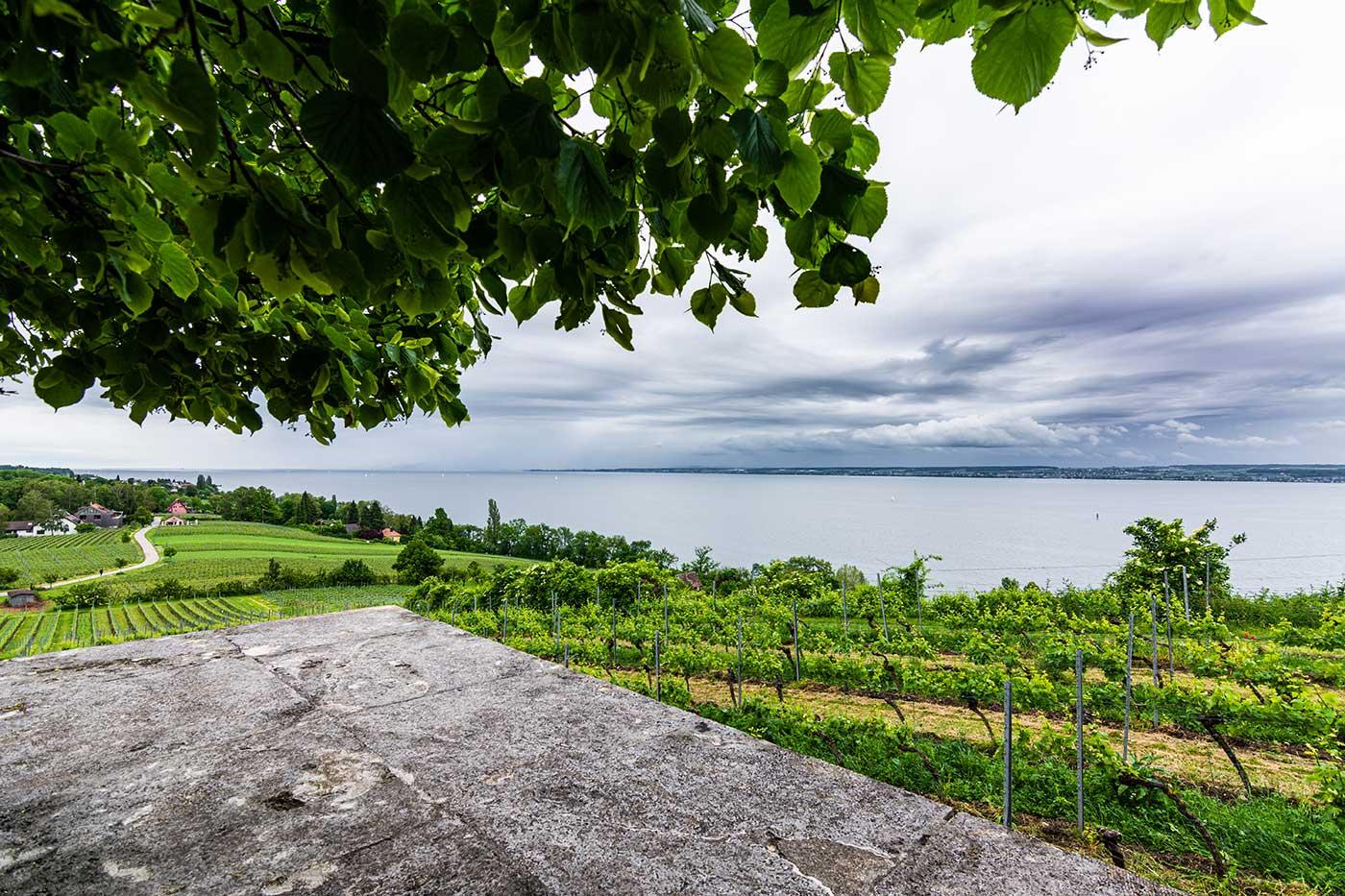 Das Bild zeigt die Aussicht am nördlichen Bodenseeufer