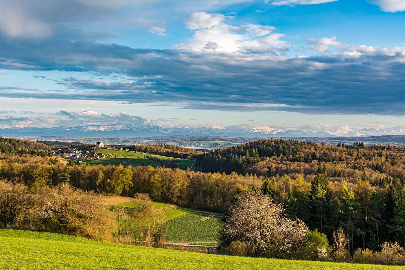 Der beste Aussichtspunkt am Bodensee ist der Sophienberg bei Langenrain